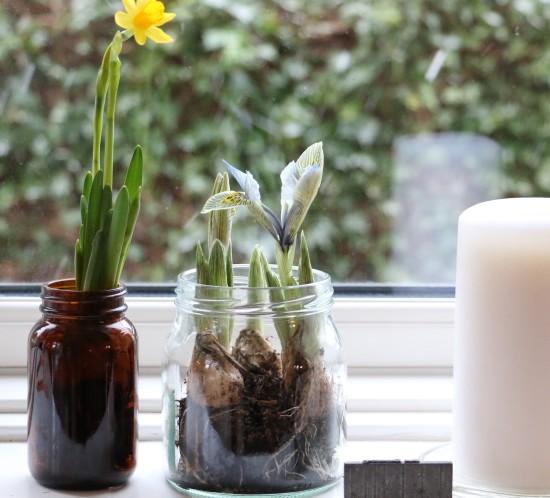 opbevaringsglas_genbrug_reuse_iris_trend_recykel