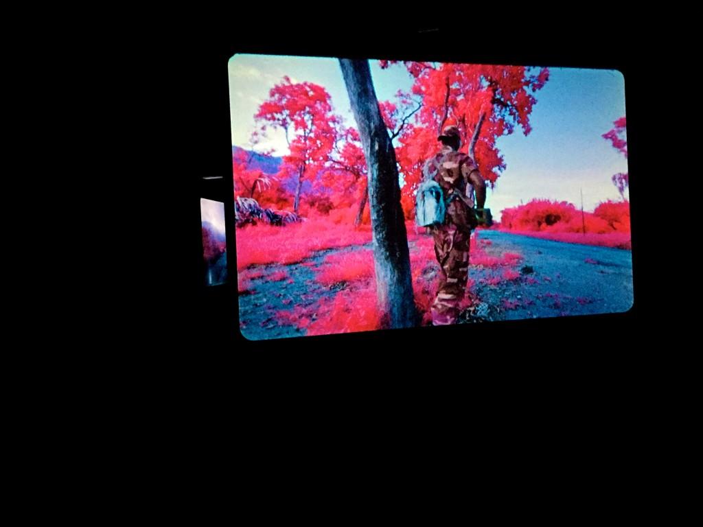louisianna_udstilling_farve_Richard_Mosse_pink_2