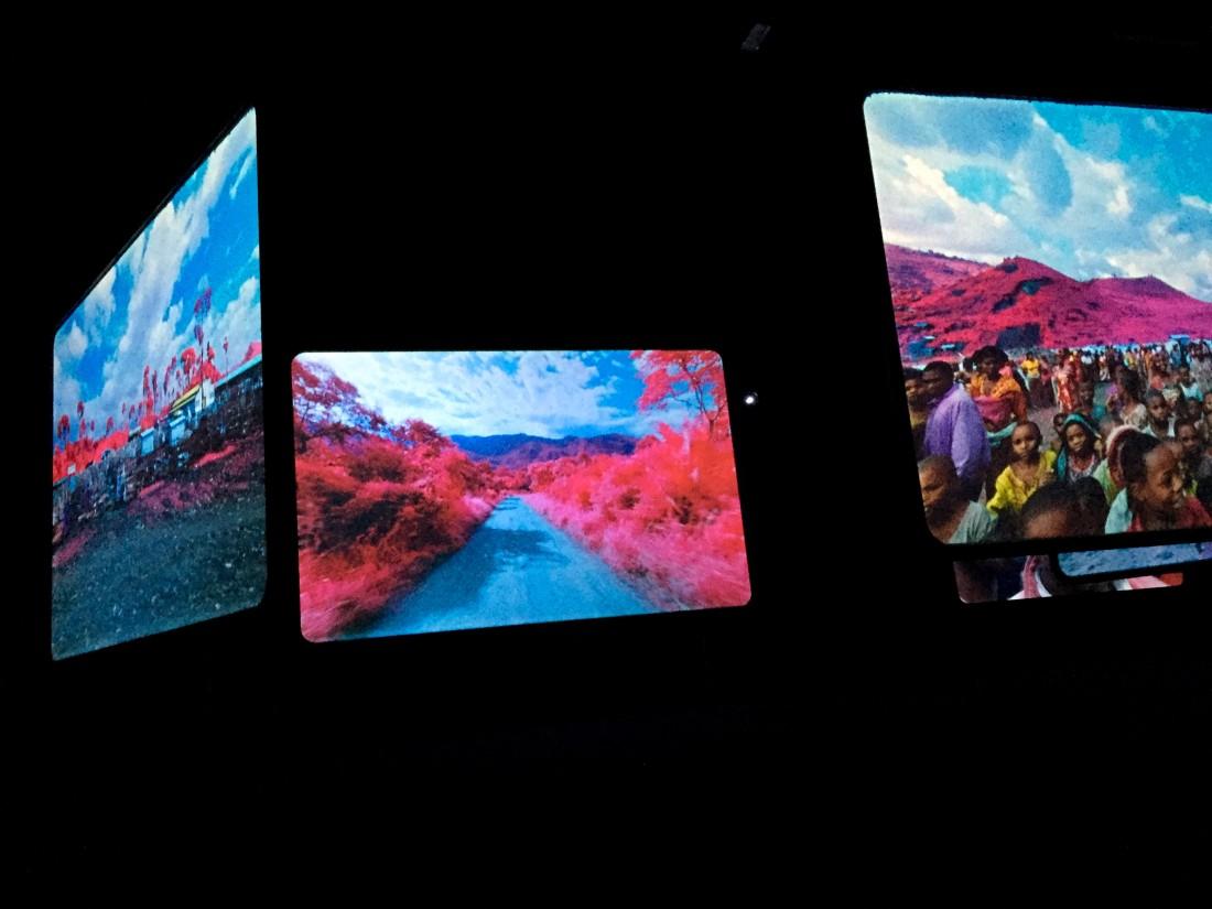 louisianna_udstilling_farve_Richard_Mosse_pink_5