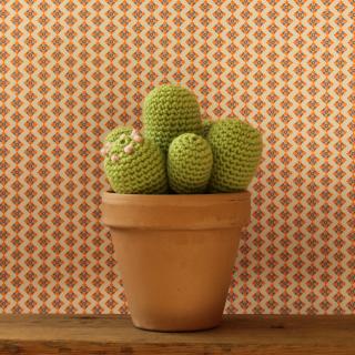 kaktuskit1_0_DIY_yarn freak