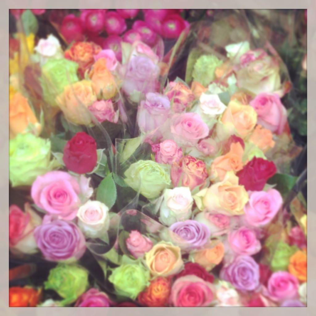 smukke_blomster_torvehallerne