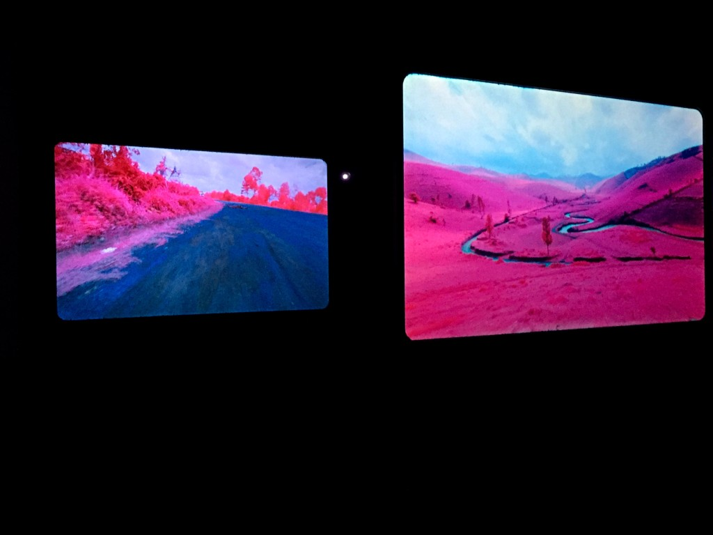 louisianna_udstilling_farve_Richard_Mosse_pink_3