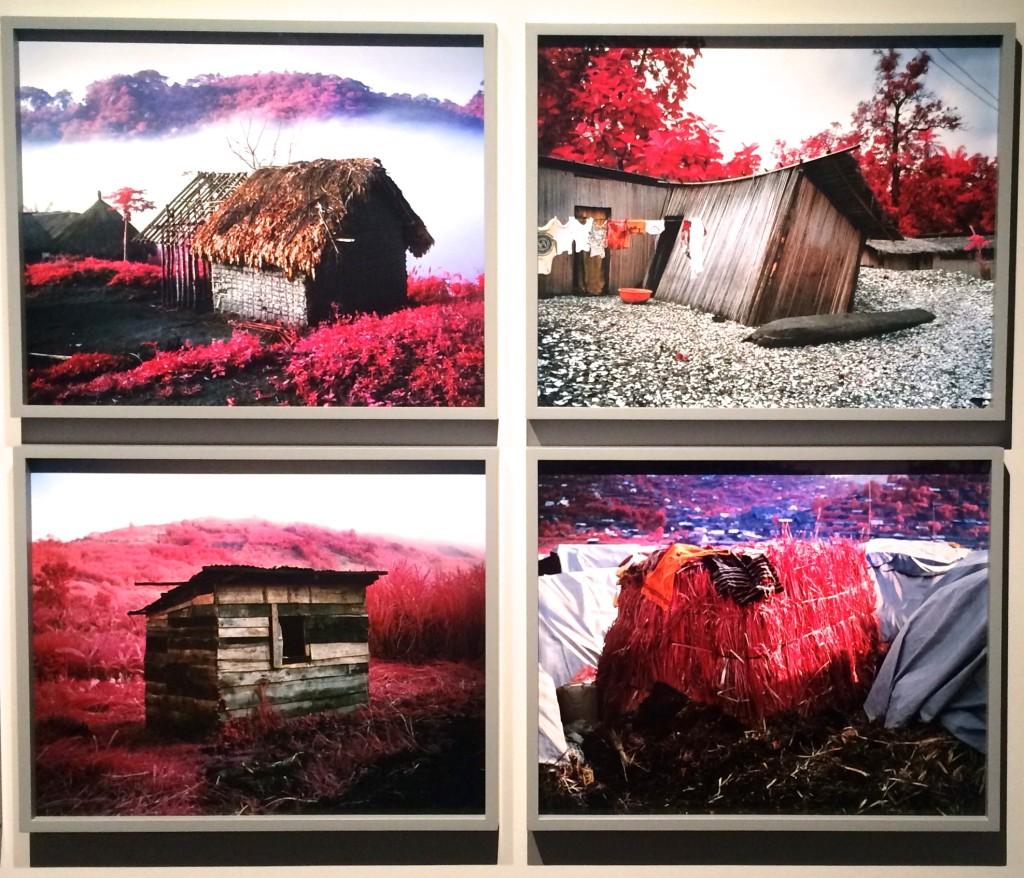louisianna_udstilling_farve_Richard_Mosse_pink