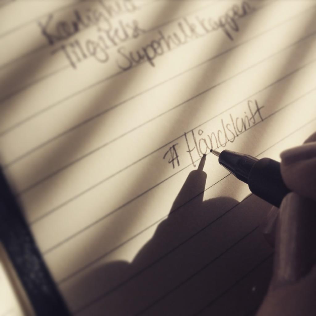 notebook_journaling_scribble_notesbog